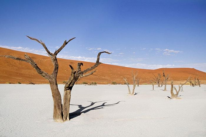Cồn cát Sossusvlei - Namibia châu phi